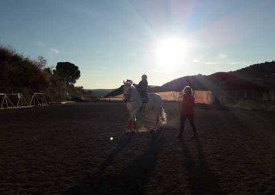 Taller equitación