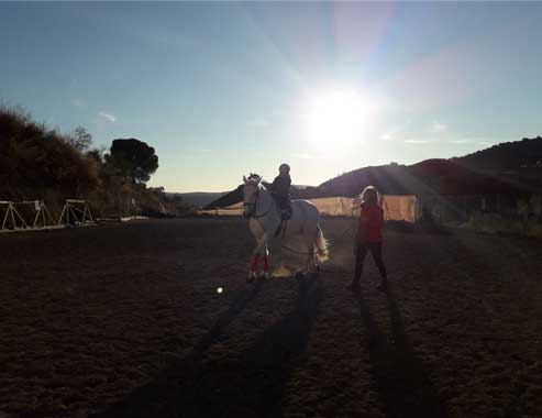 EquitaciónWEB1