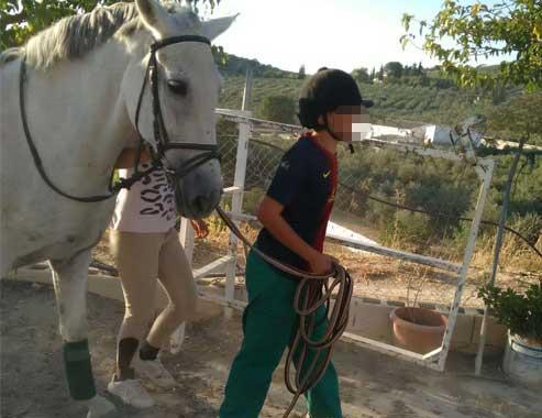 EquitaciónWEB2