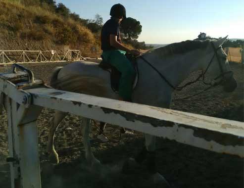 EquitaciónWEB3